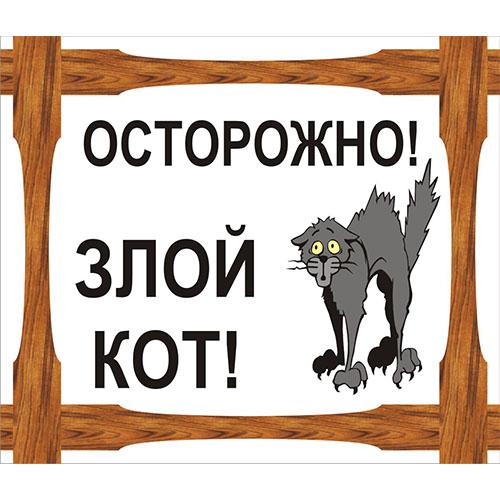 """""""Осторожно злой кот"""""""